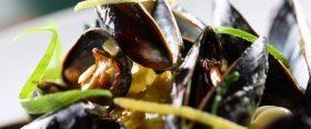 Muscheln und andere Leckereien